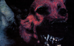 "Protomartyr ""Under Color of Official Right"" review"