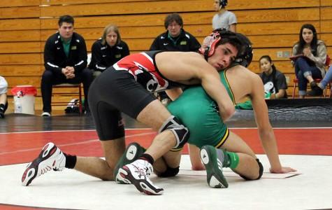 Wrestlers score individual victories