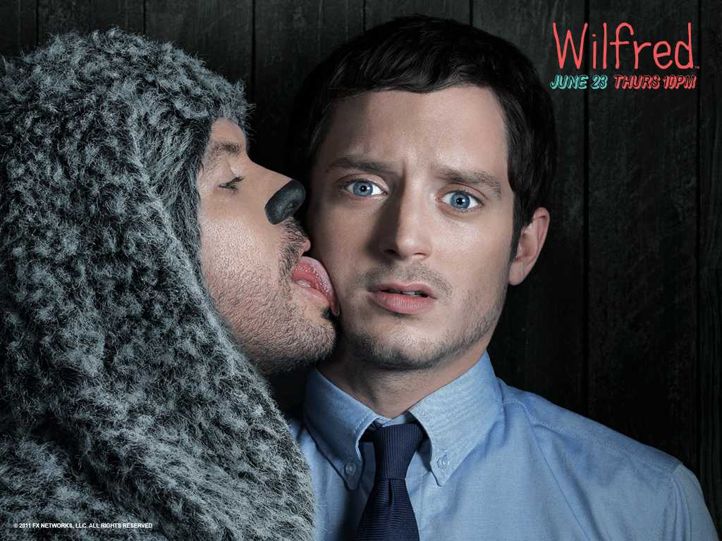Wilfred (2011) currently has 4 seasons available to watch on Hulu and FX.