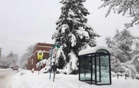 Gallery: Lincoln campus after Portland's historic snowstorm