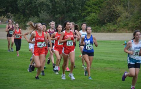XC teams place 2nd, 4th at PIL districts