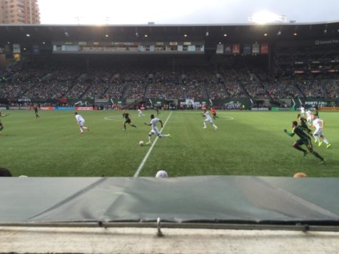 Optimism is high for Timbers