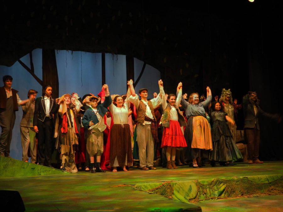 Into+the+Woods%3A+spring+musical+wrap-up