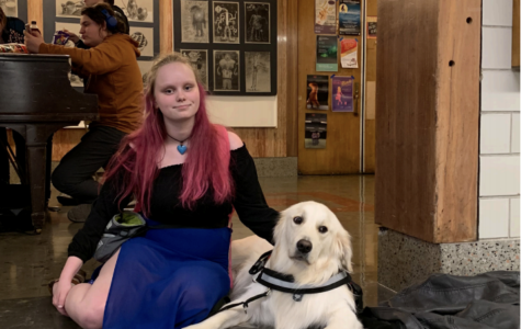 Service animals assist members of Portland community