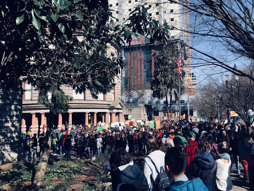 Students walk out in March 2019 for worldwide climate strikes accumulating a crowd of over 1000.