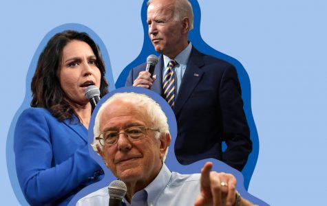 Democratic Primaries update: Biden surges into the lead