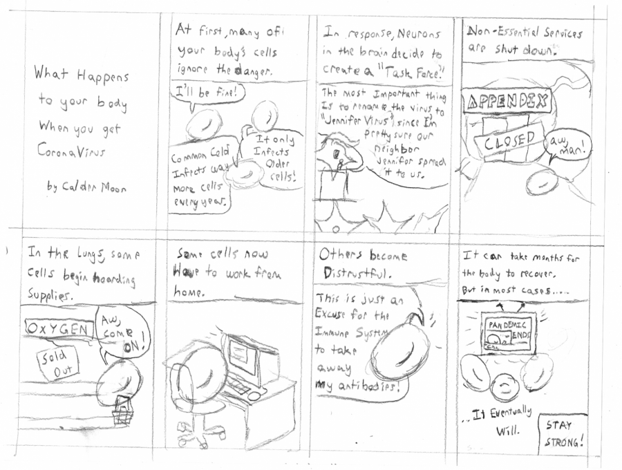 Comic%3A+%22What+happens+to+your+body+when+you+get+coronavirus%22
