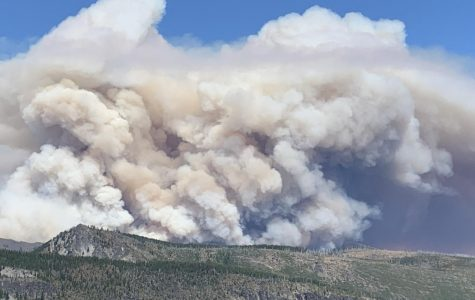 Views of the Lionshead fire, started by lightning, which covers all of the Mt. Jefferson wilderness area and Camp Sherman. Cardinal Times staff member Hadley Steele camped near the fire and was forced to evacuate.