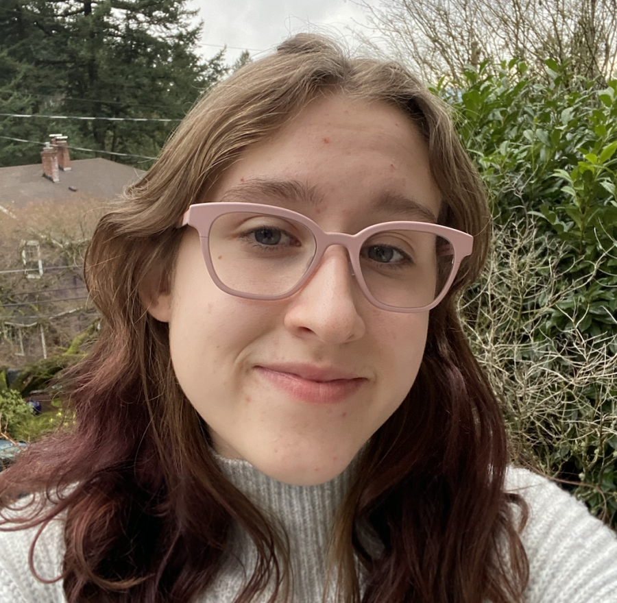 Gabby Shaffer is a junior on staff who started the Romance Book Club at Lincoln this year. She writes to inform others about the joy she and others find in romance reading.